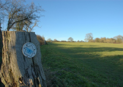Warndon Parish Neighbourhood Plan